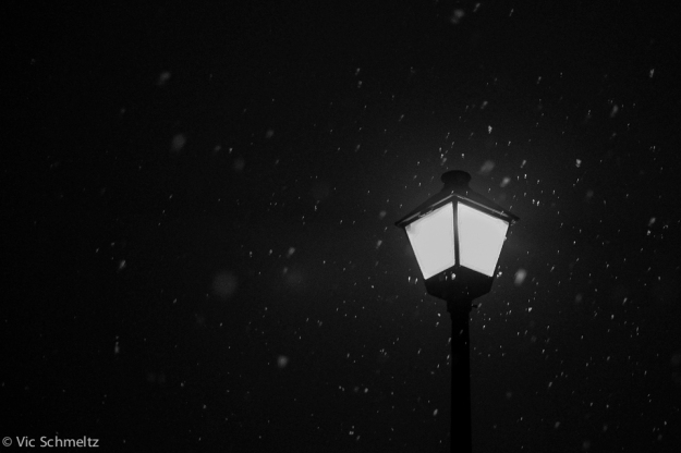 Night Flurries